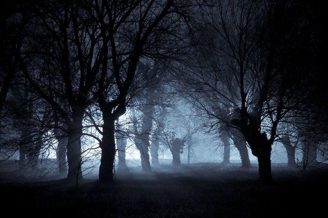 In der Nacht sind wir schutzlos