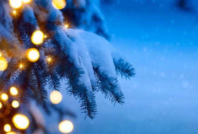 Die schönste Zeit des Jahres