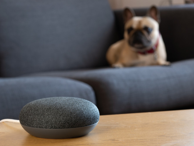 Google Nest Mini in Grau