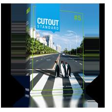 CutOut 5